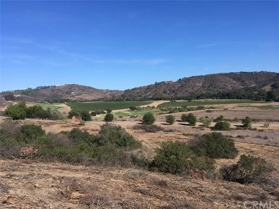 Temecula Residential Lots & Land For Sale: Via Vaquero