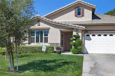 Menifee Single Family Home For Sale: 28392 Raintree Drive