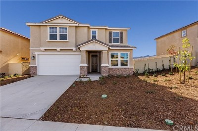 Lake Elsinore Single Family Home For Sale: 4013 Elderberry