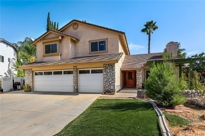 Wildomar Single Family Home For Sale: 22956 Akwo Circle