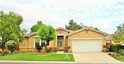 Hemet Single Family Home For Sale: 468 Olazabal Drive