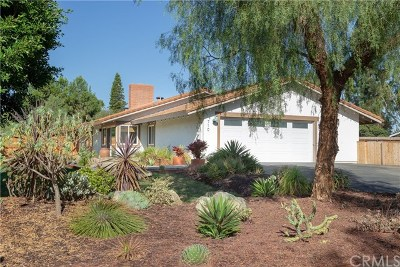Encinitas Single Family Home For Sale: 710 Edelweiss Lane