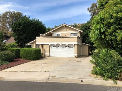 San Juan Capistrano Multi Family Home For Sale: 33801 Via Cascada