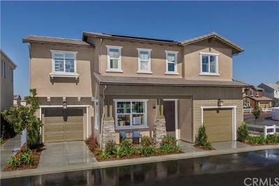 Chino Single Family Home For Sale: 6946 Avignon Drive