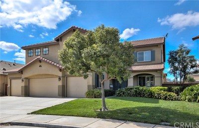 Menifee Single Family Home For Sale: 31779 Harden Street