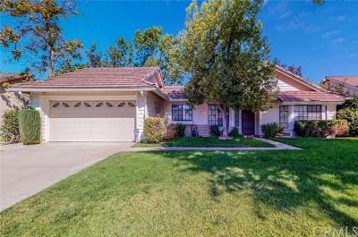 Hemet Single Family Home For Sale: 41410 Shadow Mountain Way