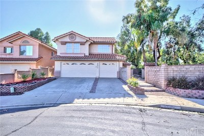 Murrieta Single Family Home For Sale: 24511 Calle Magdalena