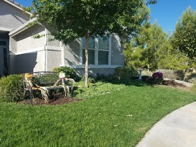 Beaumont Single Family Home For Sale: 405 Yellowstone Park