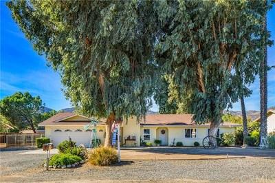 Wildomar Single Family Home For Sale: 21405 Maple Street