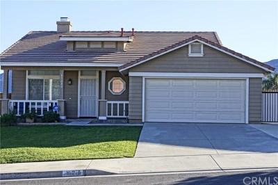 Lake Elsinore Single Family Home For Sale: 15216 Golden Sands Street