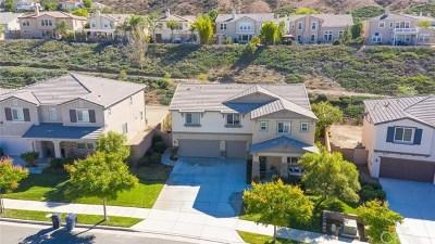 Lake Elsinore Single Family Home For Sale: 35591 Desert Rose Way