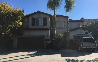 Lake Elsinore Single Family Home For Auction: 9 Ponte Carlo