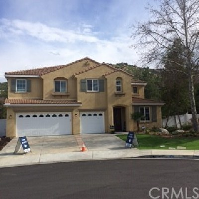 Moreno Valley Single Family Home For Sale: 15930 Sulphur Springs Road