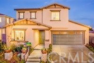 Lake Elsinore Single Family Home For Sale: 29314 Summer House Lane