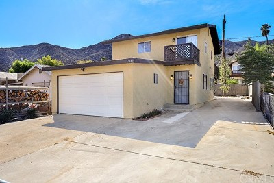 Lake Elsinore Single Family Home For Sale: 17667 Bobrick Avenue