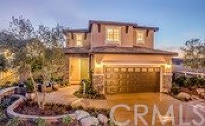 Fallbrook Single Family Home For Sale: 316 Campolina Way