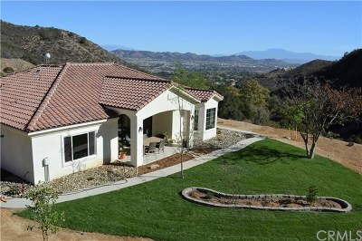 Murrieta Single Family Home For Sale: 38255 Paseo Chaparro