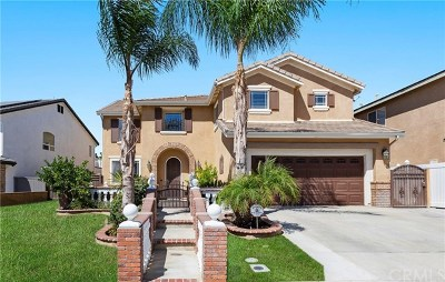 Murrieta Single Family Home For Sale: 40086 Montage Lane
