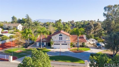 Riverside, Temecula Single Family Home For Sale: 28915 Via Norte