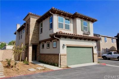 Pomona Single Family Home For Sale: 875 Avila Way