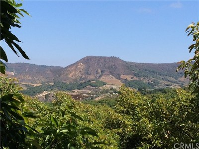 Temecula Residential Lots & Land For Sale: El Prado Road