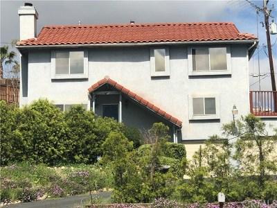 Lake Elsinore Single Family Home For Sale: 16664 Stevens