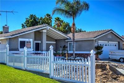 Hemet Single Family Home For Sale: 25197 Jutland Drive