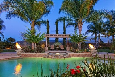 Temecula Single Family Home For Sale: 34099 Arietta Street