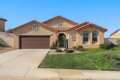 Lake Elsinore Single Family Home For Sale: 4127 Norris Street