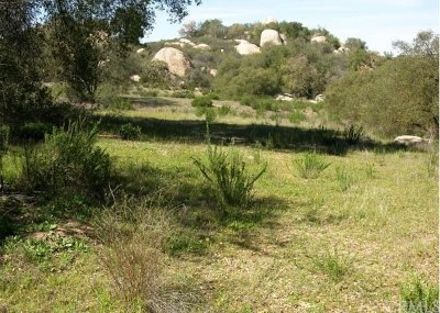 Murrieta Residential Lots & Land For Sale: Calle Los Pericos