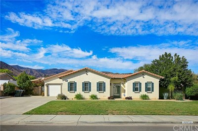 Lake Elsinore Single Family Home For Sale: 30883 Via Lakistas