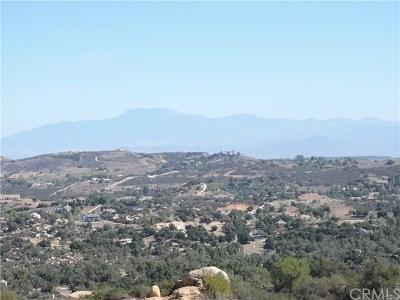 Murrieta Residential Lots & Land For Sale: 20 Avenida Escala