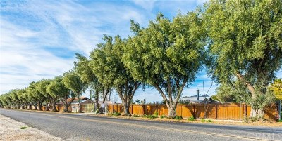 Hemet Single Family Home For Sale: 5182 Lincoln Avenue