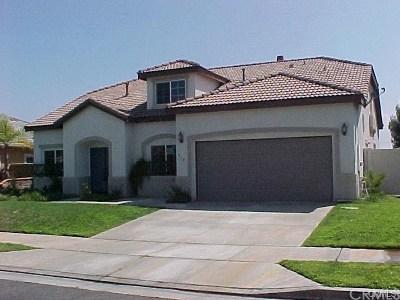 Hemet Single Family Home For Sale: 810 Shiraz Drive