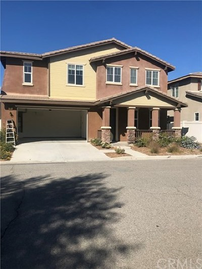 Hemet Single Family Home For Sale: 869 Curry Drive
