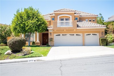 Murrieta Single Family Home For Sale: 23773 Sonata Drive