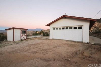 Hemet Single Family Home For Sale: 41281 Polly Butte Road