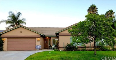 Murrieta Single Family Home For Sale: 42350 Thoroughbred Lane