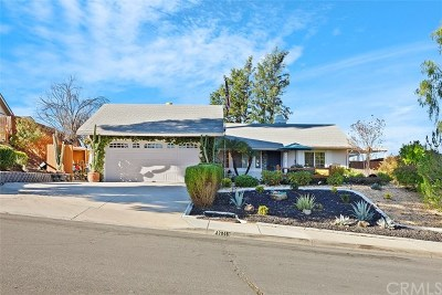Temecula Single Family Home For Sale: 42045 Cosmic Drive