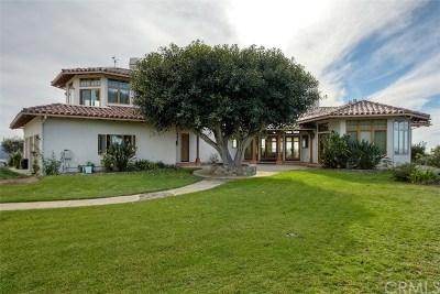 Single Family Home For Sale: 13289 Santa Virginia Drive