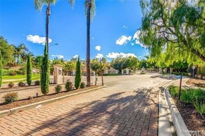 San Marcos Single Family Home For Sale: 523 Avenida Ortega