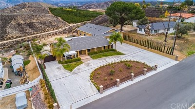 Hemet, San Jacinto Single Family Home For Sale: 26460 Rim Road