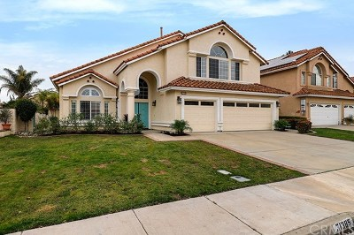 Temecula Single Family Home For Sale: 31385 Corte Tunas