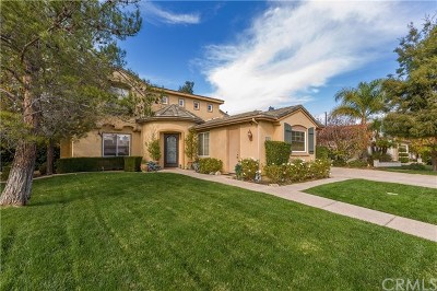 Murrieta Single Family Home For Sale: 36691 Kennemer Drive