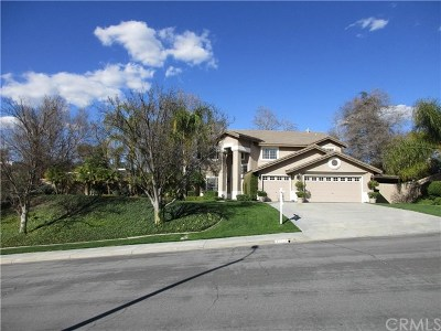 Temecula Single Family Home For Sale: 40334 Calle Katerine