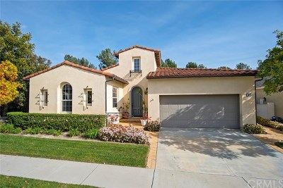 San Clemente Single Family Home For Sale: 40 Camino Lienzo