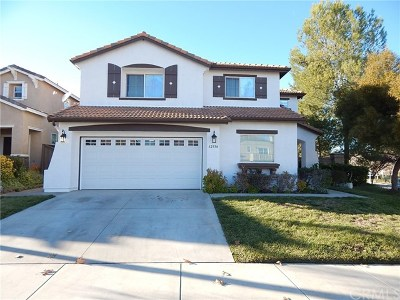 Lake Elsinore Single Family Home For Sale: 32550 Lost Road