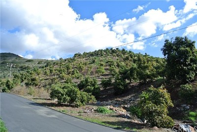 Fallbrook Residential Lots & Land For Sale: Vista Del Rio