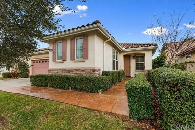 Menifee Single Family Home For Sale: 28485 Raintree Drive