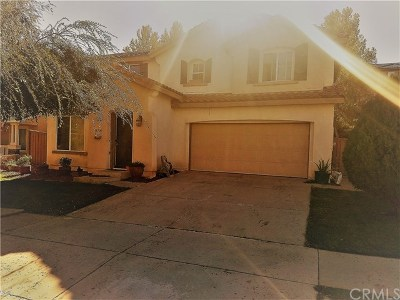 Lake Elsinore Single Family Home For Sale: 32035 Meadow Wood Lane